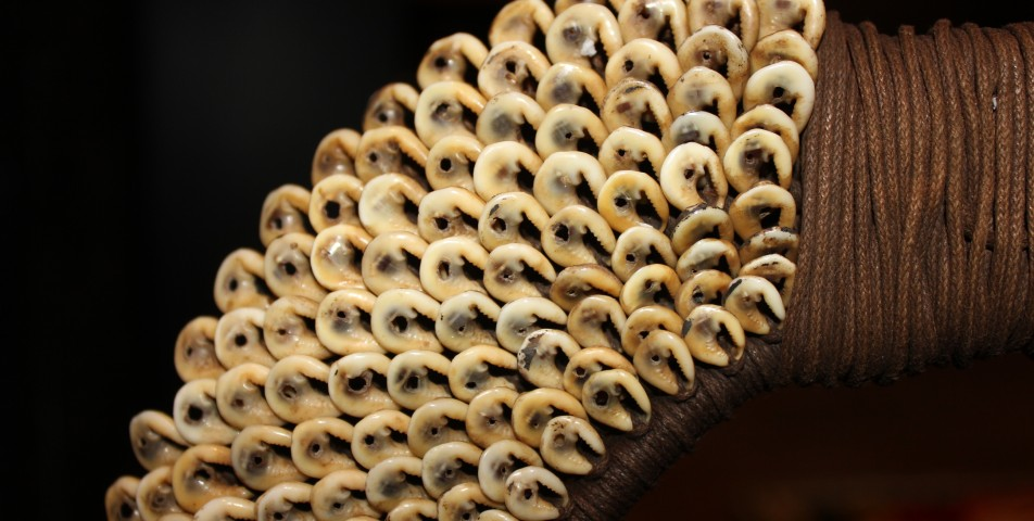 Detail from collar made from cowery shells in Papua New Guinea